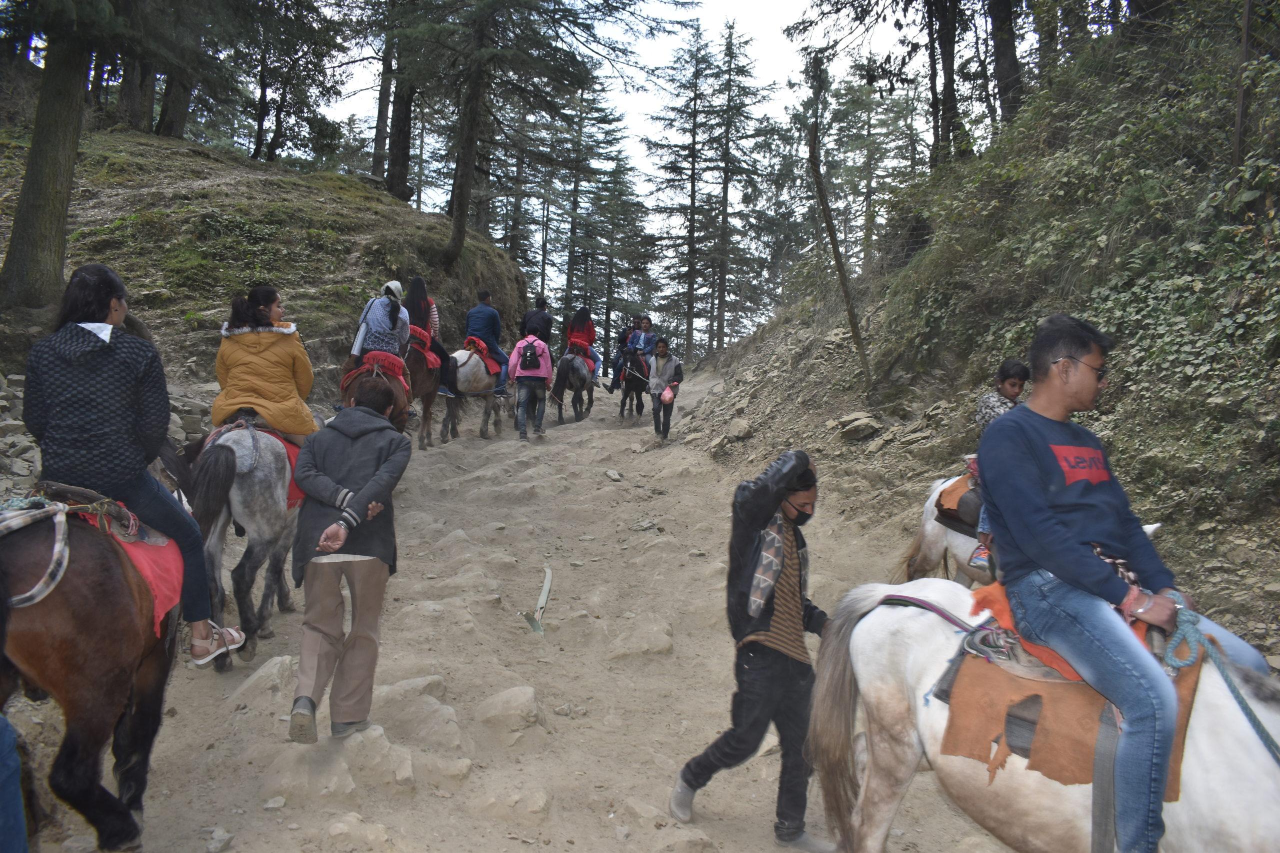 Horse Ride to Mahasu Peak